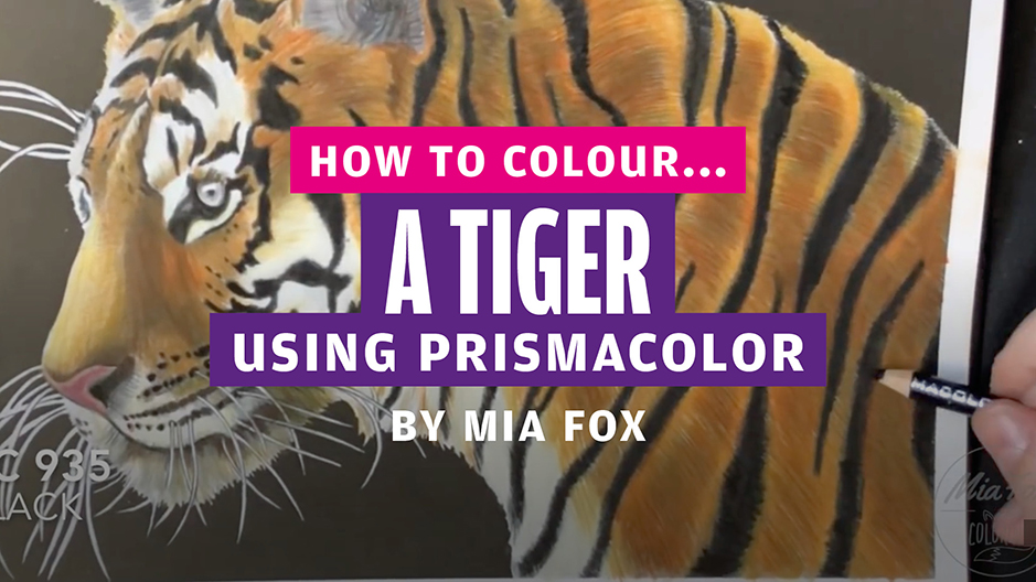 How to colour… a tiger