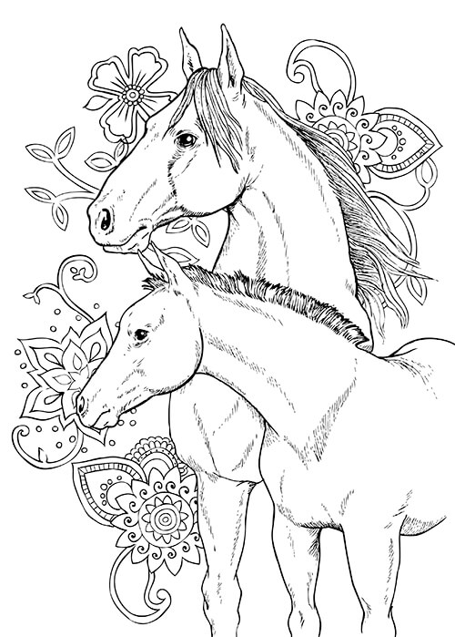 Colouring Heaven Collection Horses 33 2021 on sale now look inside sneak peek flip through free colouring page design
